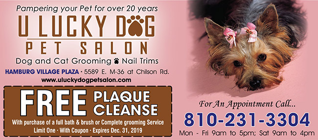 U Lucky Dog Pet Salon